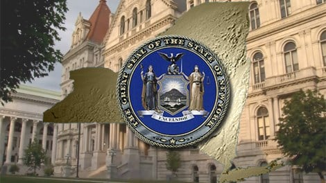 New York State legislature1 Caption